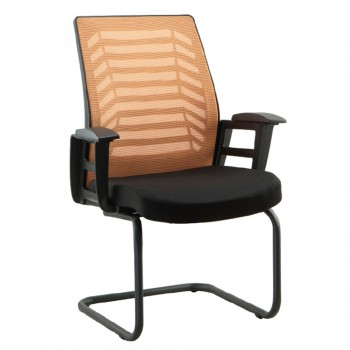 Lion Chair BELINI BEL 2253E