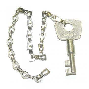 Amano Station Key No.17 - Use for PR600 Watchman Clock