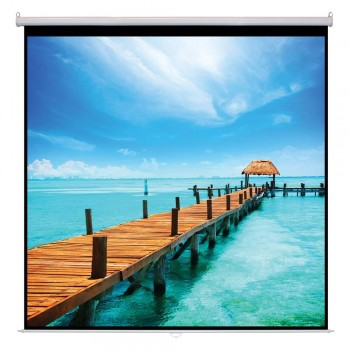 "SAMPRO 120"" x 120"" Manual Wall Screen Matte White Fabric Thickness (Item No: G18-09)"